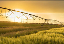 Agri SA Water Desk