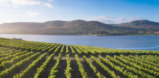 Benguela Cove Lagoon Wine Estate